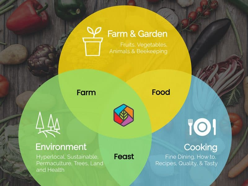 Farm Food Feast Venn Diagram