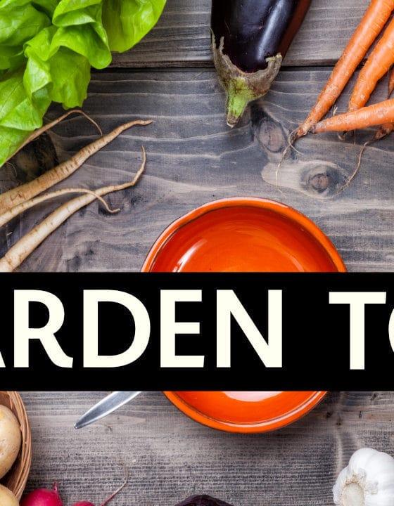 Garden Tour 2020